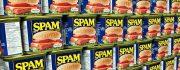 7 Dicas para evitar que a sua newsletter caia na pasta de Spam dos clientes!